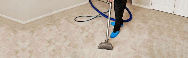 Swan's Carpet Cleaning